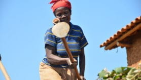 Rural poor gain more from crop, income diversification