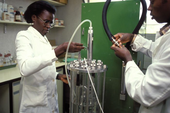 Laboratory investigating biological control of pest insects