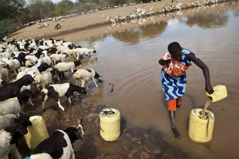 A Maasai woman is collecting water