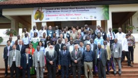 New academy 'to decode crop genomes, curb hunger'