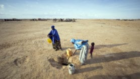 Africa Analysis: Ending Africa's chronic hunger cycle