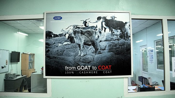 """""""From goat to coat"""". Cashmere is a profitable resource threatened by cheap imports and environmental changes challenging production for most nomads. Since 1960s, the number of goats rose from 4.5 to 23 million, leading to overgrazing and falling wool prices. Will the nomads adapt to the new, competitive, market?"""