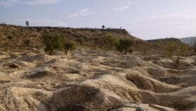 Combine efforts to tackle land degradation