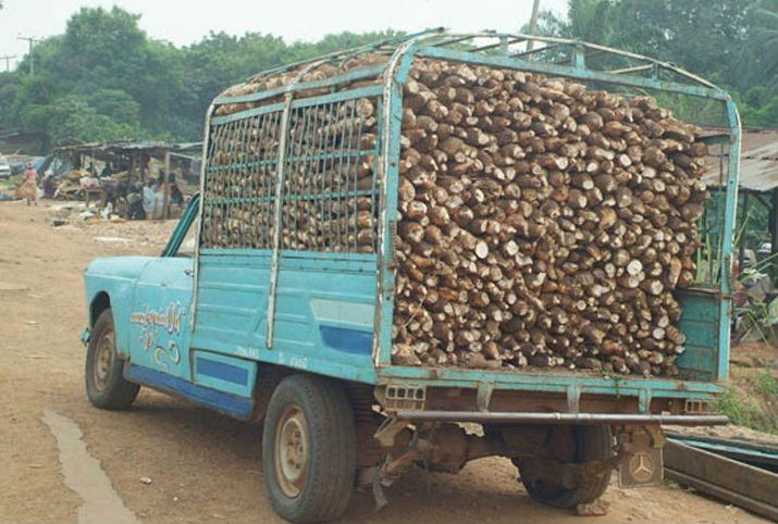 Truck loaded with cassava roots
