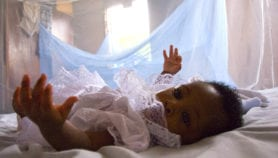 Augmented bed nets cut malaria cases by 25 per cent