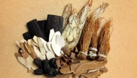 Africa pushes for COVID-19 traditional medicine R&D