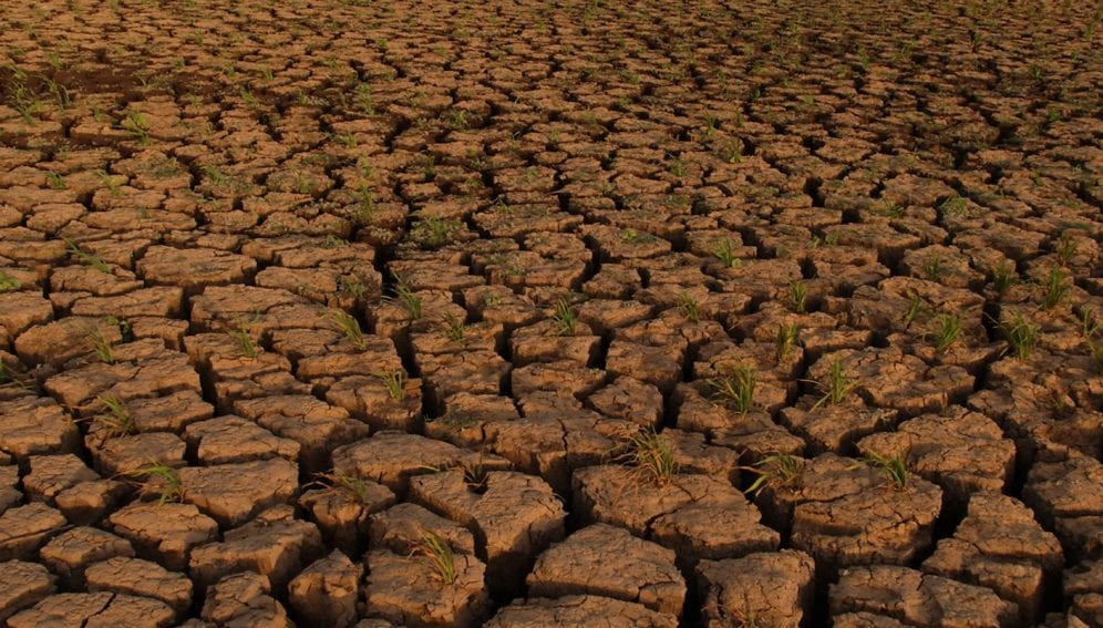 Parched soil by the White Nile