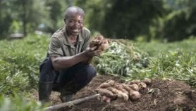 'Smarter food' needed to end global hunger by 2030