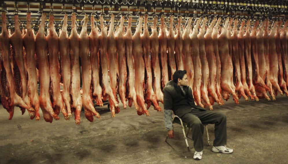 meat consumption and drug resistance