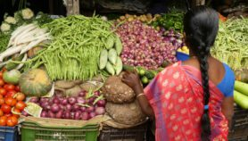 Women, street food could answer world's hunger problems