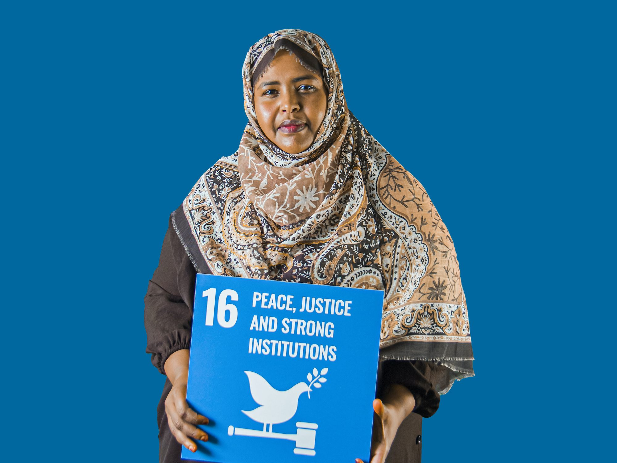 16 - Peace Justice and Strong Institutions